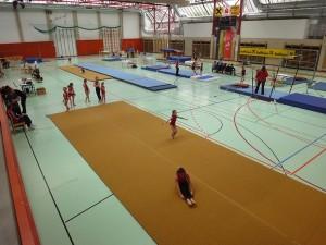 ASKÖ NÖ Landesmeisterschaft Kunstturnen Frauen @ Mehrzweckhalle Ternitz